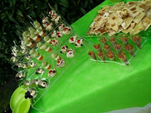 Catering in piscina2