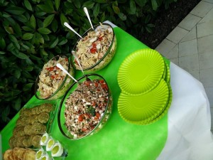 catering in piscina3